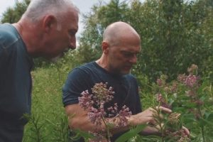 paul and les with milkweed